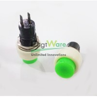 Pushbutton Switch DS-451 Green Push On