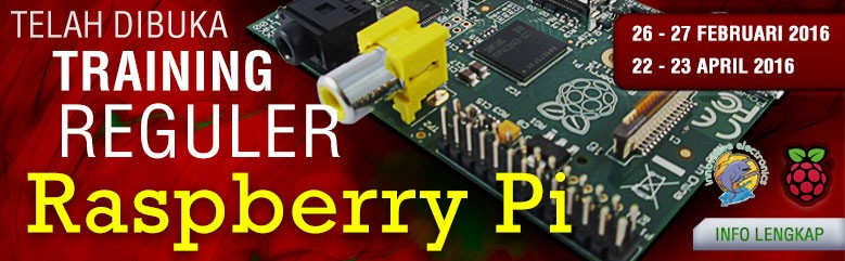 Training Raspberry Pi