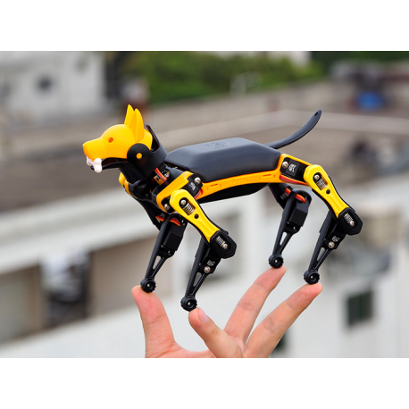 Petoi Bittle Bionic Open Source Robot Dog STEM with Free Course