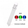 LED RGB Red Green Blue 4P Clear 5mm CLEAR Common Cathode